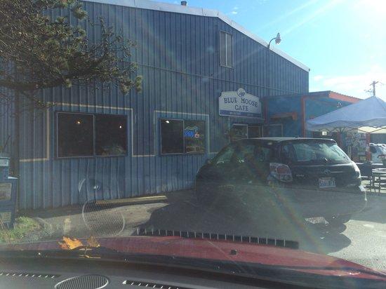 Blue Moose Cafe : Entrance