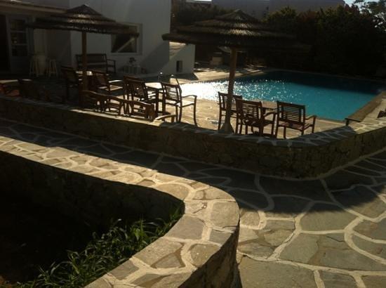 Pelican Hotel: piscina