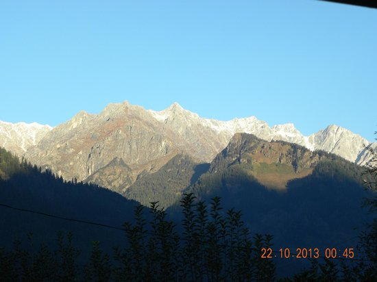 SilverBirch Manali Cottage : The mountains!!!