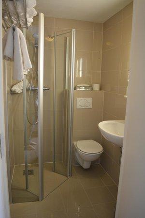 Hotel Central Park: tiny bathroon but still acceptable