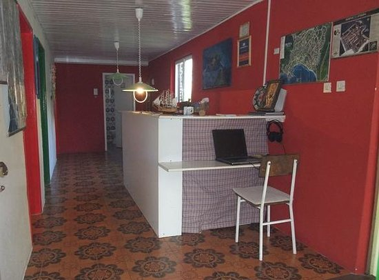 Freedom Hostel Budva : Reception