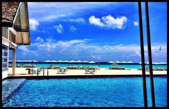 Four Seasons Resort Maldives at Landaa Giraavaru: Blu Beach