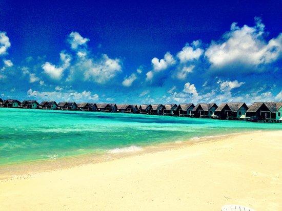Four Seasons Resort Maldives at Landaa Giraavaru: View of the overwater villas from blu beach