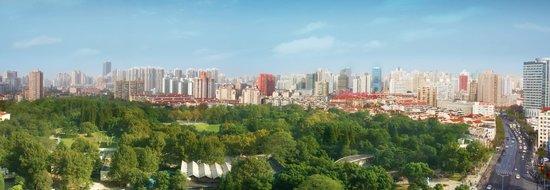 Elite Residences Shanghai: View from the Residences