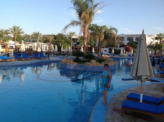 Hilton Sharm Dreams Resort : pool