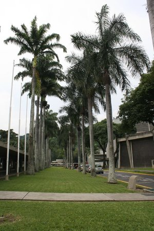 Universitätsstadt von Caracas (Ciudad Universitaria de Caracas): Pasillo de las Banderas frente al edificio de la Biblioteca