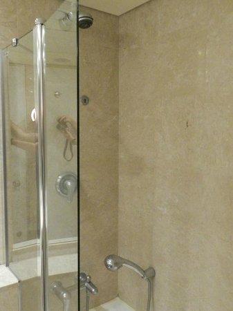 Dan Panorama Tel Aviv: Shower over bath