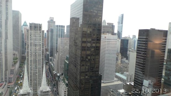 The Towers at Lotte New York Palace: Great view from the 48th Floor in the Towers