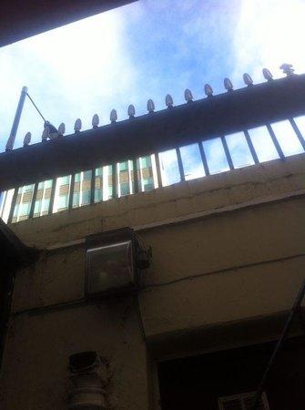 Comfort Inn London - Victoria : Abbiamo chiesto affaccio strada e ci hanno accontentati!