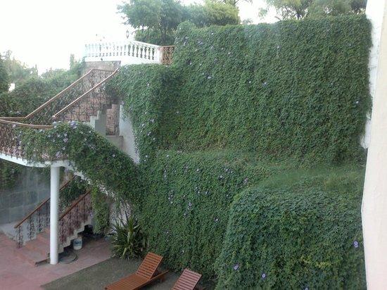 Hotel Hilltop Palace: Pool Area