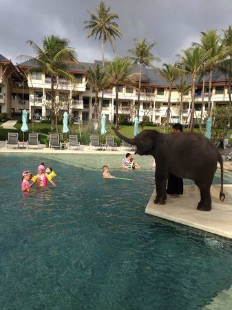 Outrigger Laguna Phuket Beach Resort : Candy