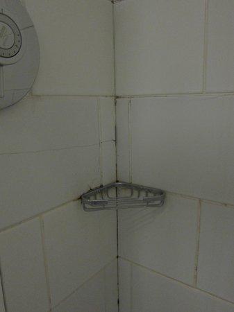 Leeson Inn Downtown: Shower