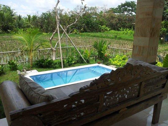 Harmony Restaurant & Villa: Mini Jacuzzi pool