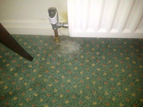 Mercure Perth Hotel: Stain
