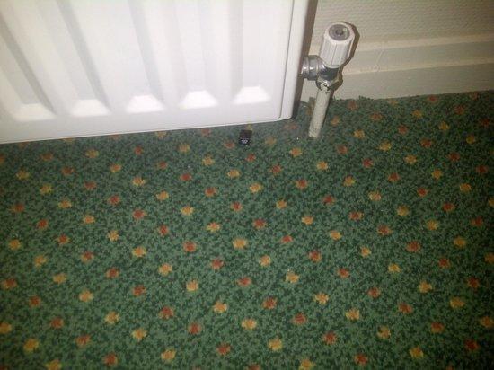 Mercure Perth Hotel: Size tag