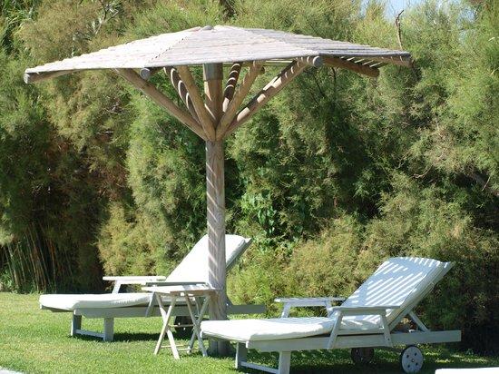Ammos Naxos Exclusive Apartments: tuin/ligbedden bij het zwembad