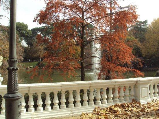 Casa de Campo: Lago lateral  con arboles de colores