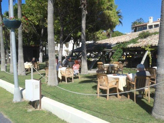 Barut Acanthus & Cennet: Hotel gardens
