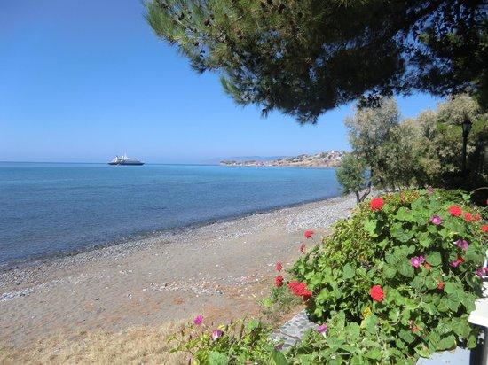 Delfinia Hotel & Bungalows: strand voor hotel