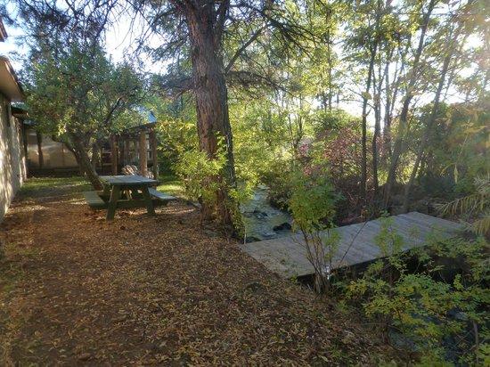 Cedaredge Lodge: Grounds