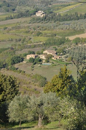 Agriturismo Podere Felceto: View from the road looking down on Podere Felceto