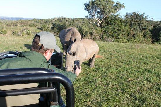 Kariega Game Reserve - River Lodge : Ranger Dave likes his Rhinos