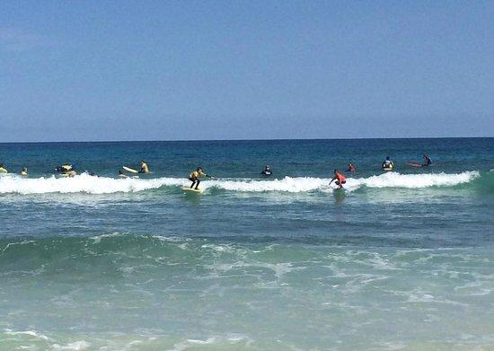 Escuela de surf 7 Island Surf: .