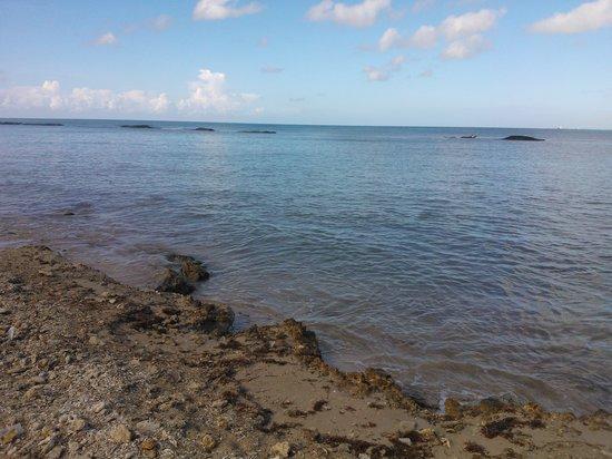 Grand Bahia Principe La Romana: playa del hotel