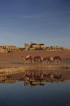 Qasr Al Sarab Desert Resort by Anantara: Water Falaj