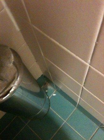 Holiday Inn Naples: The dirty bathroom
