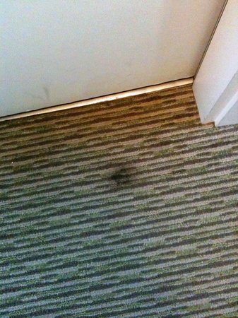 Holiday Inn Naples: The stain of water from the air conditioning