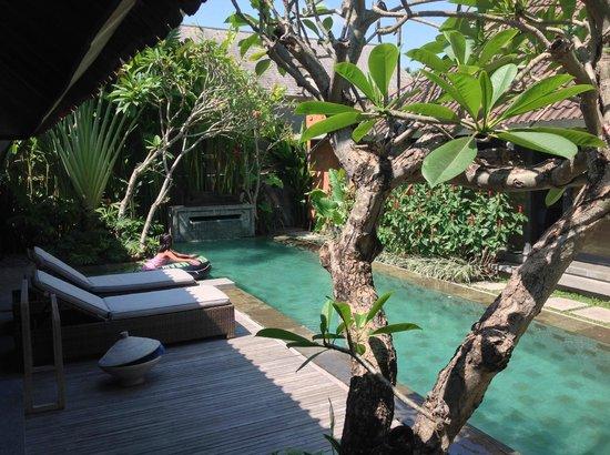 Villa Komea : Notre piscine privée