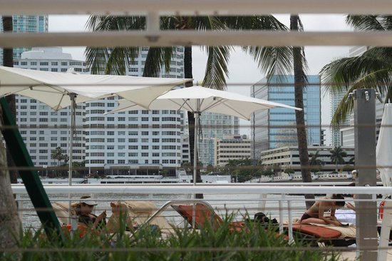 Mandarin Oriental, Miami: View from the swimming pool