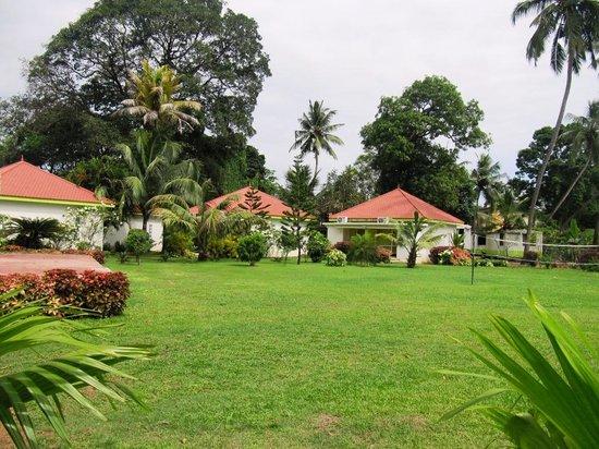Panoramic Sea Resort : Garden