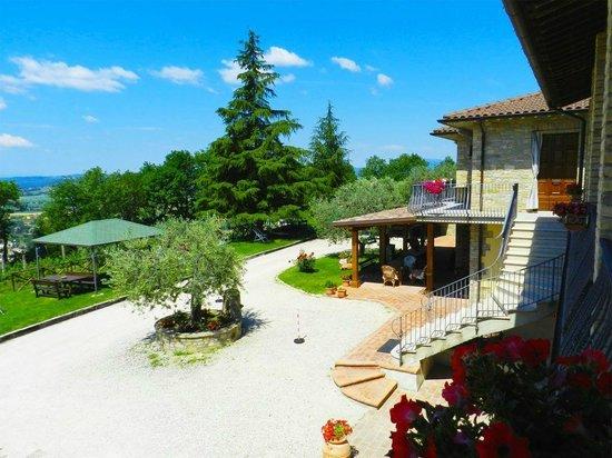 Agriturismo la Rocca Assisi: Giardino