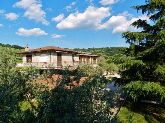 Agriturismo la Rocca Assisi: Panoramica