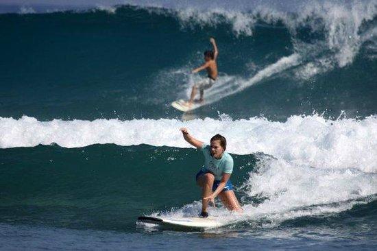Bobo Surfs Up Surf School