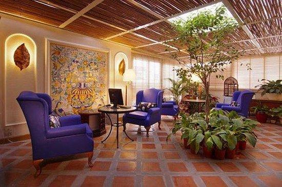 The Riviera Hotel: Garden