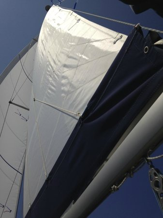 Occhio Al Boma - Escursioni in Barca a Vela : la nave