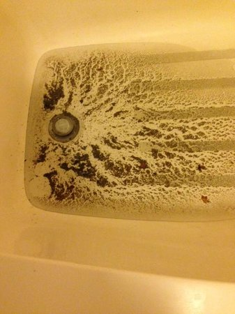 Econo Lodge: Sludge in the bathtub