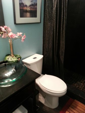 Charleston's NotSo Hostel: two of two bathrooms in main house