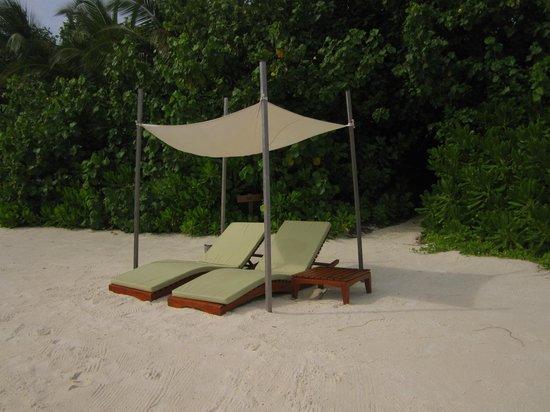 Coco Bodu Hithi: Dedicated pergola sun beds outside your villa