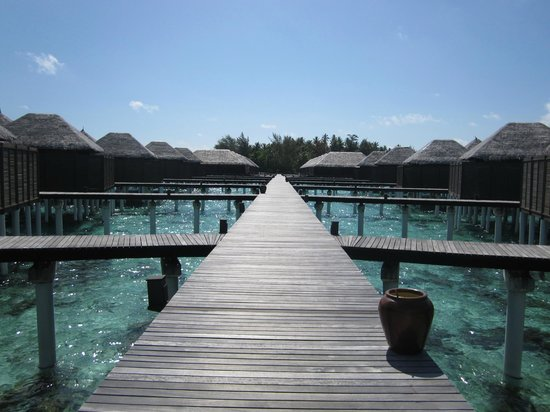 Coco Bodu Hithi: Pier/jetty for Water Villas and Escape Water Villas