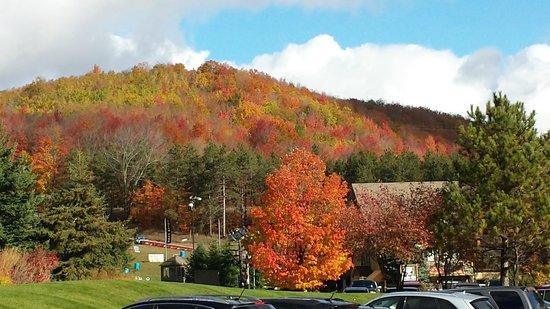 fall at Crystal Mountain
