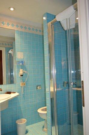 Hotel De Petris: Bañoprivado con cabina de Ducha.