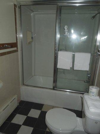 كلينجتون بيكو موتور إن: salle de bain