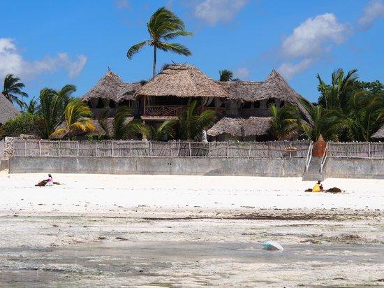 Mamamapambo Boutique Hotel : L'hôtel vu de la plage