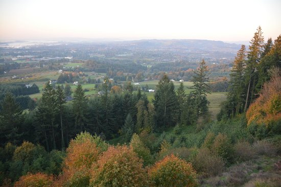 Chehalem Ridge Bed and Breakfast: View of the valley