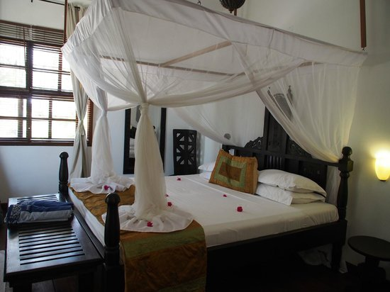 Next Paradise Boutique Resort : Chambre