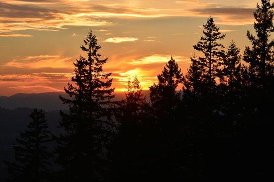Chehalem Ridge Bed and Breakfast: Sunset  view